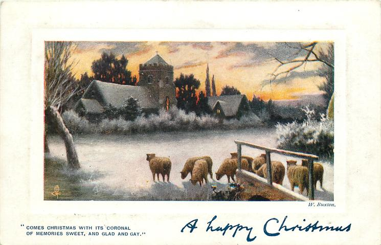 A HAPPY CHRISTMAS   sheep front, village behind