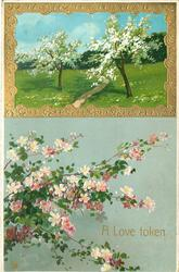 pink flowers below, gold bordered insert top right with fruit trees with white blossom, path between