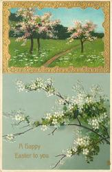 white flowers below, gold bordered insert top right with fruit trees with pink blossom, path between