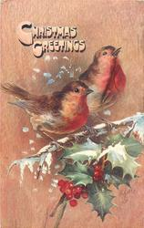 CHRISTMAS GREETINGS  two robins facing right