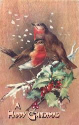 A HAPPY CHRISTMAS  two robins facing in opposite directions