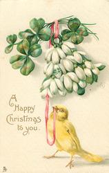 A HAPPY CHRISTMAS TO YOU  yellow canary stands with pink ribbon in beak, snowdrops & clover above