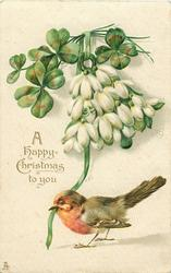 A HAPPY CHRISTMAS TO YOU  robin stands with ribbon in beak, snowdrops & clover above