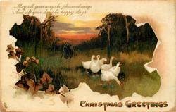 CHRISTMAS GREETINGS  six geese front, man & son behind