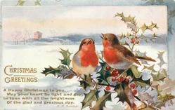 CHRISTMAS GREETINGS two robins right on holly