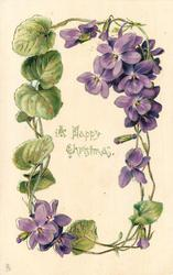 A HAPPY CHRISTMAS or A HAPPY NEW YEAR circlet of purple violets, cluster of violets upper right