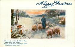 shepherd drives sheep away, three robins