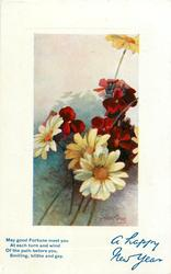 A HAPPY NEW YEAR  daisies & red wallflowers