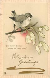 CHRISTMAS GREETINGS  bird & mistletoe above