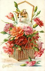 A HAPPY CHRISTMAS  basket of carnations, cat above