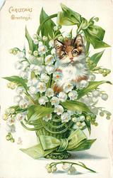 CHRISTMAS GREETINGS  basket of lilies-of-the-valley, cat impression superimposed