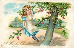 A HAPPY CHRISTMAS, girl in tree picking cherries