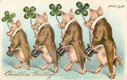 CHRISTMAS GREETINGS, GOOD LUCK  four dressed pigs parade left each carrying a 4 leaf clover