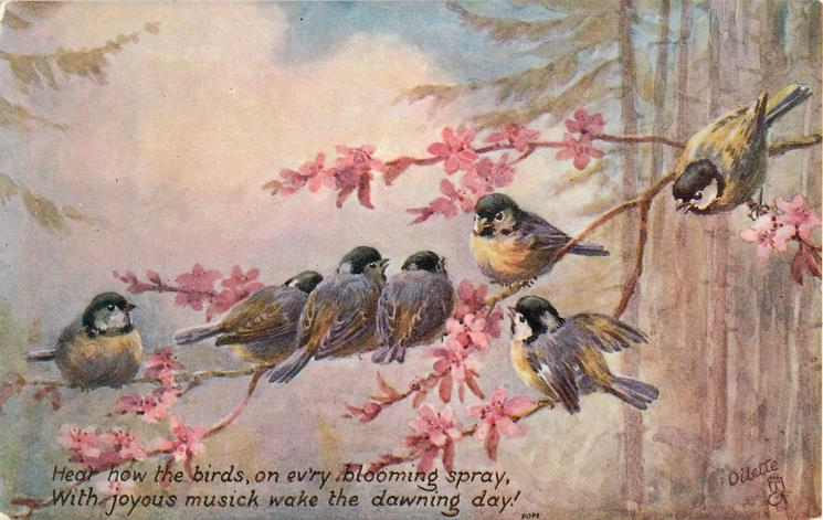 HEAR HOW THE BIRDS, ON EV'RY BLOOMING SPRAY, WITH JOYOUS MUSICK WAKE THE DAWNING DAY
