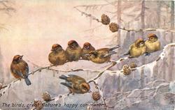 THE BIRDS GREAT NATURE'S HAPPY COMMONERS