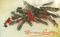 holly & snowy evergreen in center of card