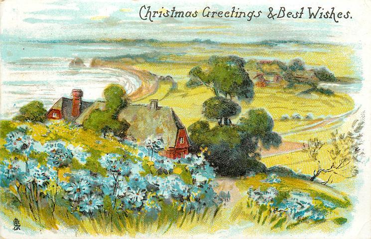 CHRISTMAS GREETINGS & BEST WISHES  rural sea-side, cornflowers