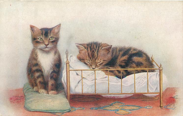 two kittens, one sleeps in small bed,one sits on cushion