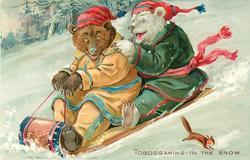 TOBOGGANING IN THE SNOW