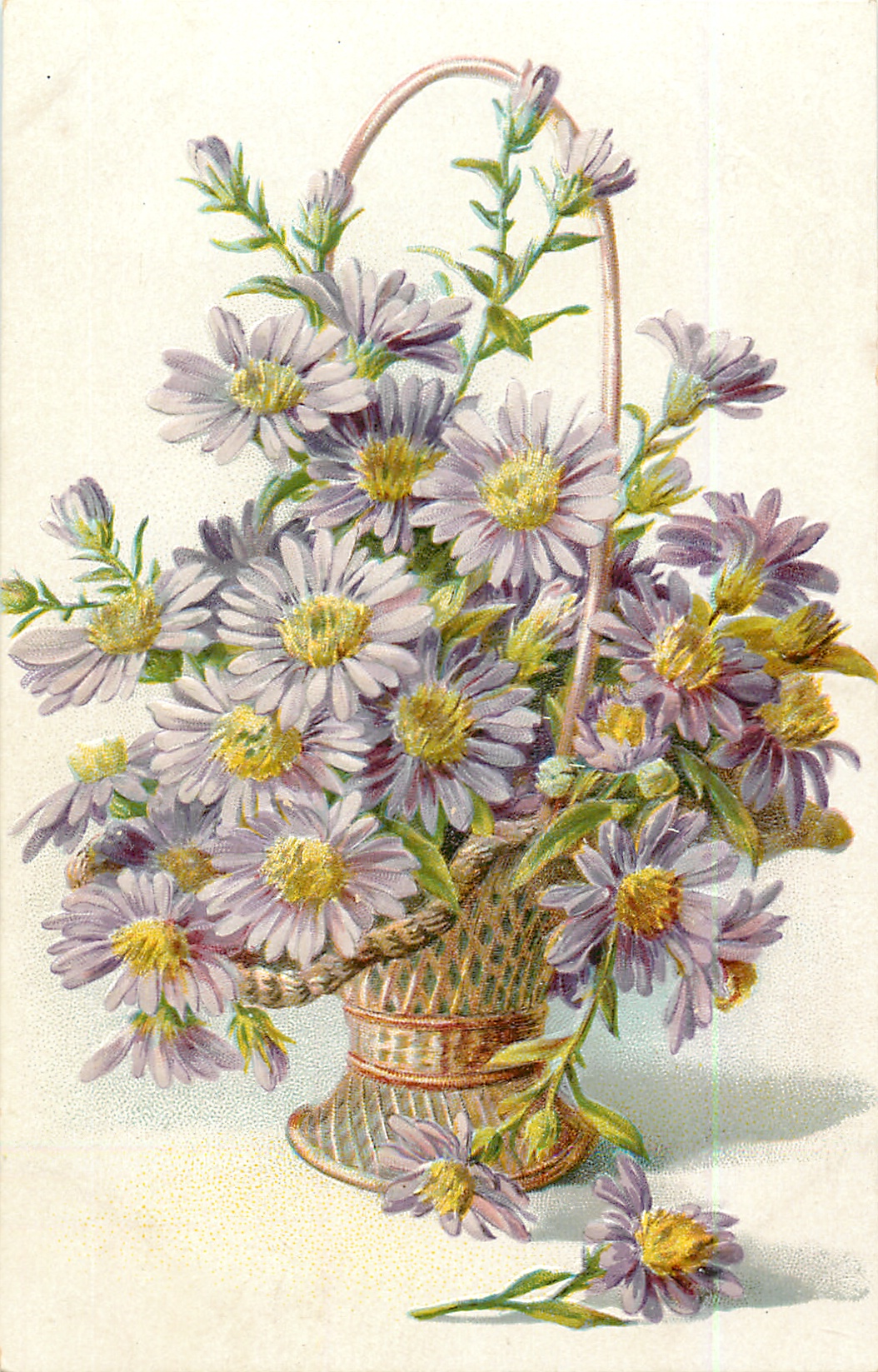 asters, violet flowers with yellow centers in wicker ...