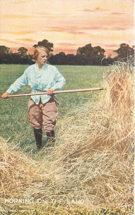 person shaking up hay