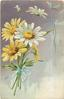 yellow  & white daisies tied with blue ribbon