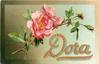 DORA  roses