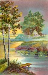 rural river scene, two birch trees left, small dock left, house  with fence center right, water-lilies