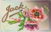 JACK  pink anemones