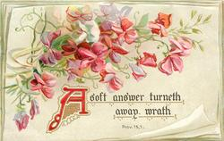 A SOFT ANSWER TURNETH AWAY WRATH  red sweet-peas
