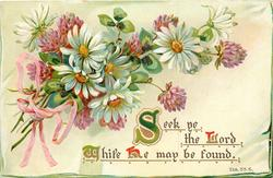 SEEK YE THE LORD WHILE HE MAY BE FOUND  daisies & clover