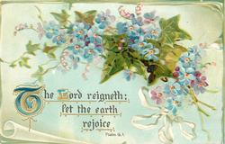 THE LORD REIGNETH: LET THE EARTH REJOICE  forget-me-nots & ivy