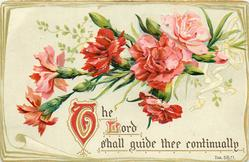 THE LORD SHALL GUIDE THEE CONTINUALLY  carnations