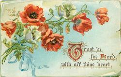 TRUST IN THE LORD WITH ALL THINE HEART  poppies
