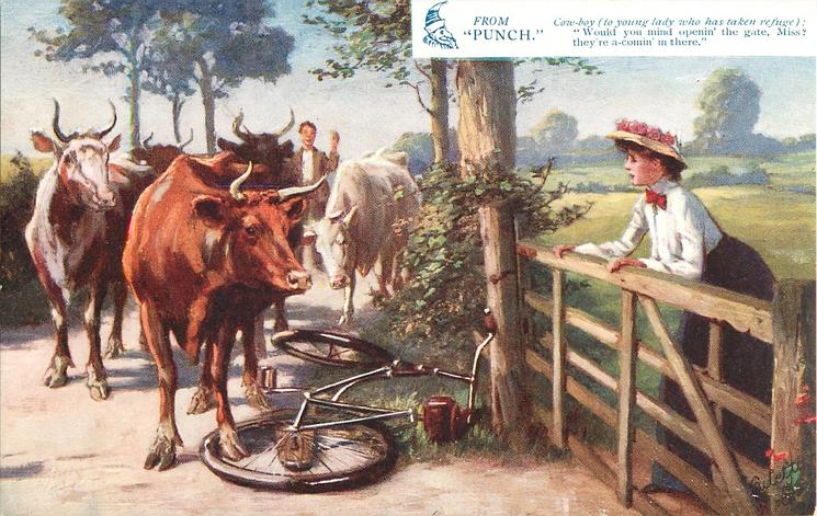COW-BOY (TO YOUNG LADY WHO HAS TAKEN REFUGE |IN THERE