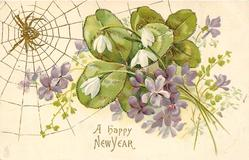 A HAPPY NEW YEAR  violets and snowdrops in front of clover leaves, spider & web top left