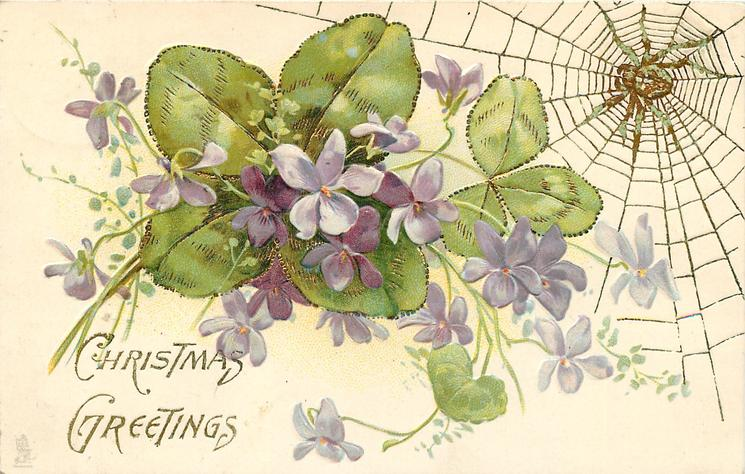 CHRISTMAS GREETINGS  violets in front of clover leaves, spider & web top right
