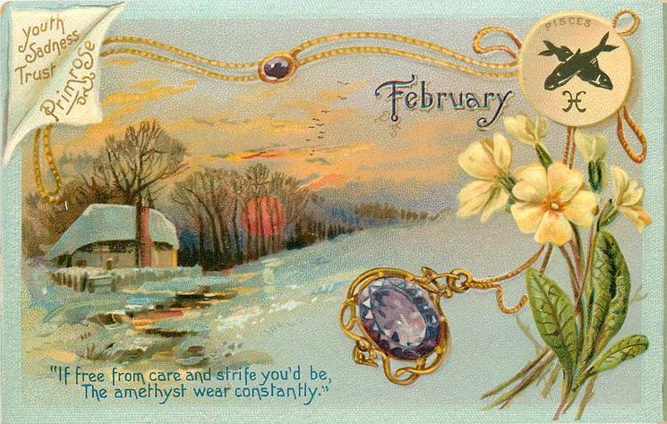 FEBRUARY PRIMROSE YOUTH SADNESS TRUST PISCES  amethyst & primroses