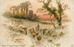 WHERE SNOW LIES DEEP  sheep coming through gate which shepherd holds open, church behind