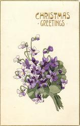 CHRISTMAS GREETINGS  posy of violets, leans to the left