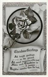 CHRISTMAS GREETINGS  rose and verse