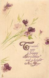 TO WISH YOU A HAPPY CHRISTMAS AND A BRIGHT NEW YEAR  purple pansies