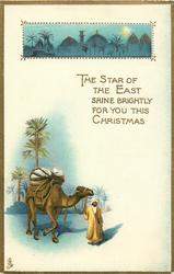 THE STAR OF THE EAST SHINE BRIGHTLY FOR YOU THIS CHRISTMAS  camel, inset of holy land