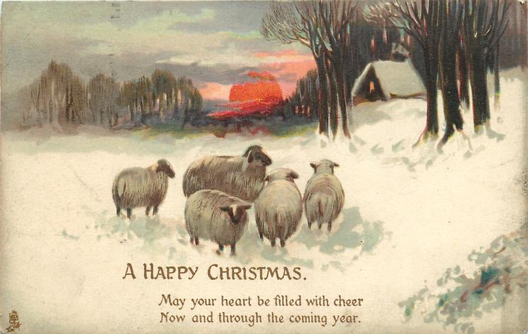 A HAPPY CHRISTMAS  5 sheep