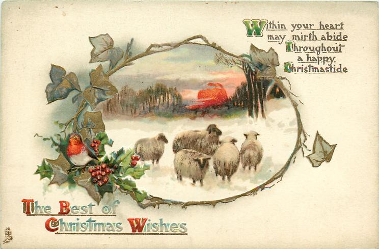 THE BEST OF CHRISTMAS WISHES  five sheep in snow, sunset