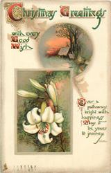 CHRISTMAS GREETINGS  lilies, rural insert