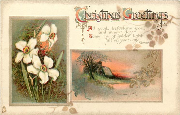 CHRISTMAS GREETINGS  jonquils, rural inset