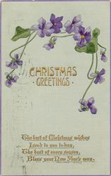 CHRISTMAS GREETINGS  violets above & around