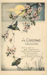 A CHRISTMAS GREETING  kingfishers