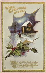 WARM CHRISTMAS WISHES  man & child approach lighted cottage, holly